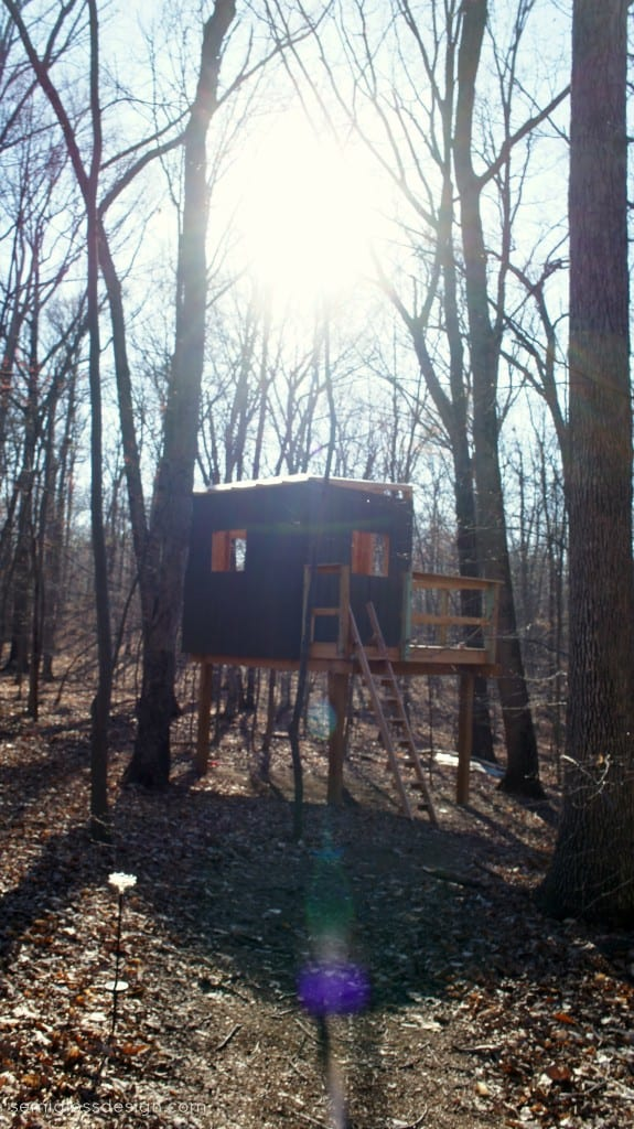 treehouse in woods