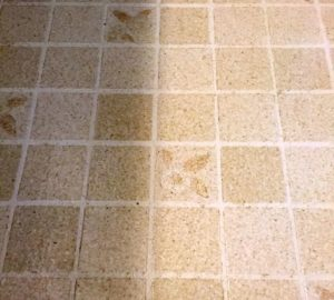 Is your floor ugly? A stenciled floor is the perfect solution! You can paint that tired vinyl floor with the right precautions! #stenciledfloor #stenciled #paintedfloors #paintedvinyl