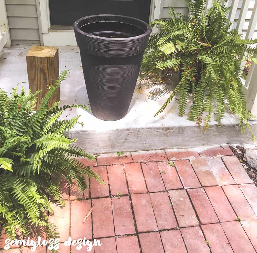 Wood, planter and fern