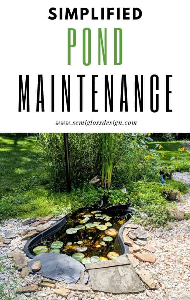 easy tips for pond maintenance