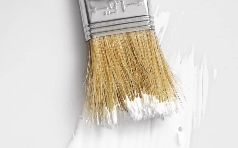 paint primer on brush