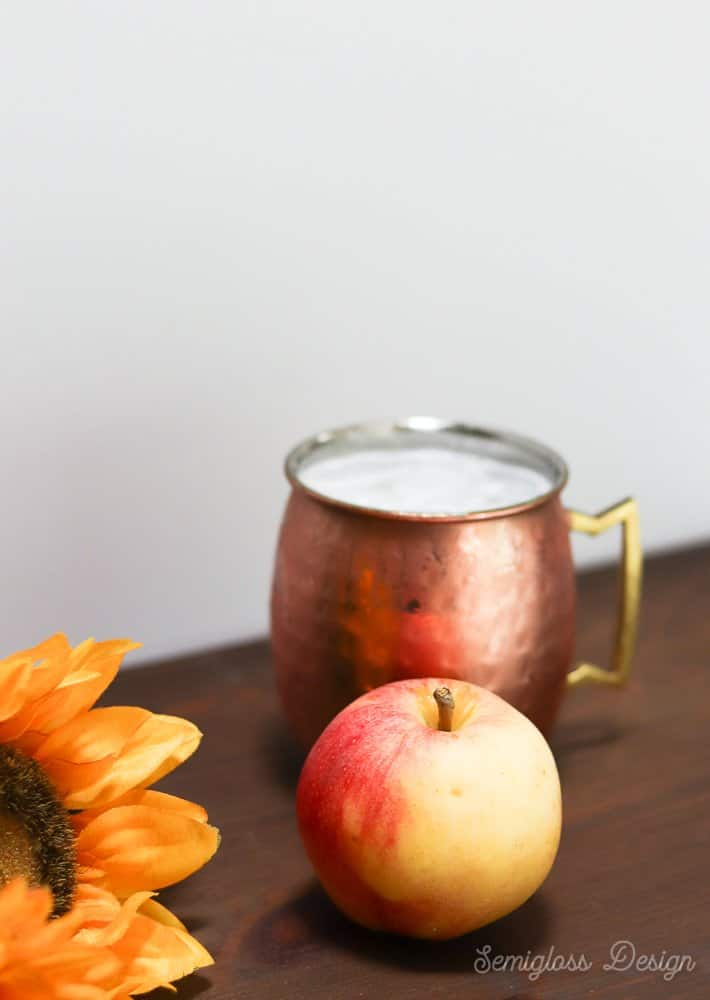 fall cocktail with apple vodka