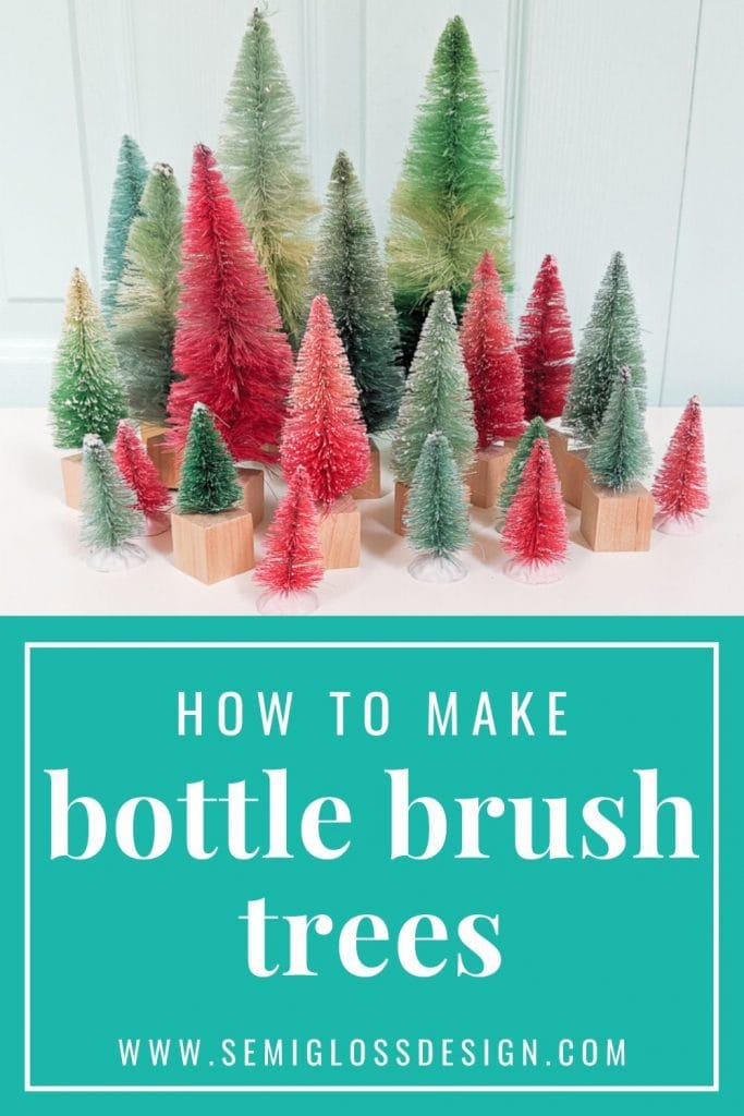 bottle brush tree collage