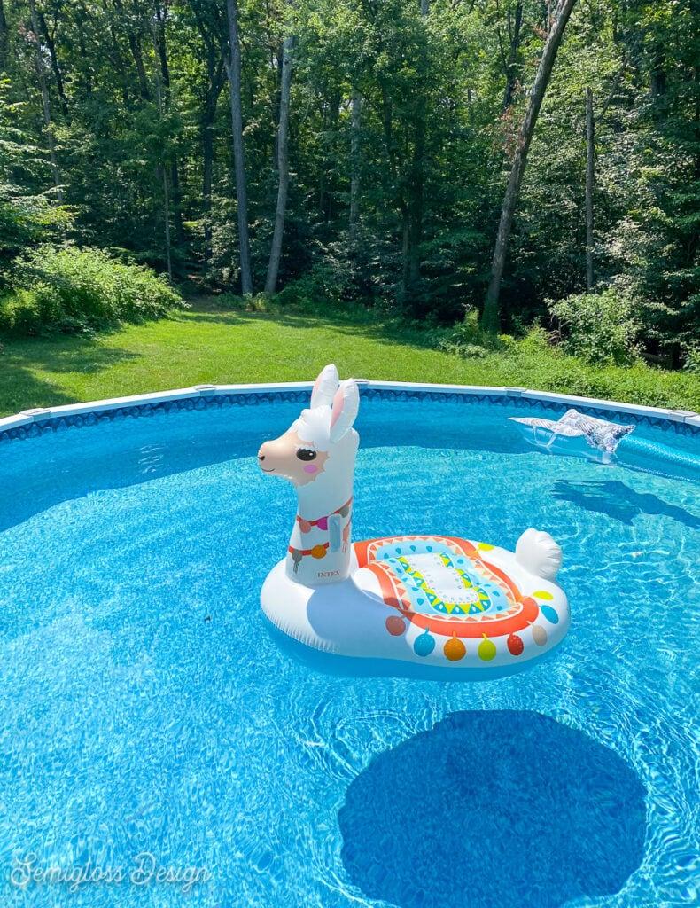 llama float in pool